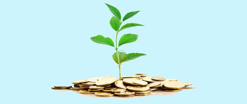 Creating Wealth by Investment Planning