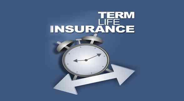 Know Term Insurance Plans