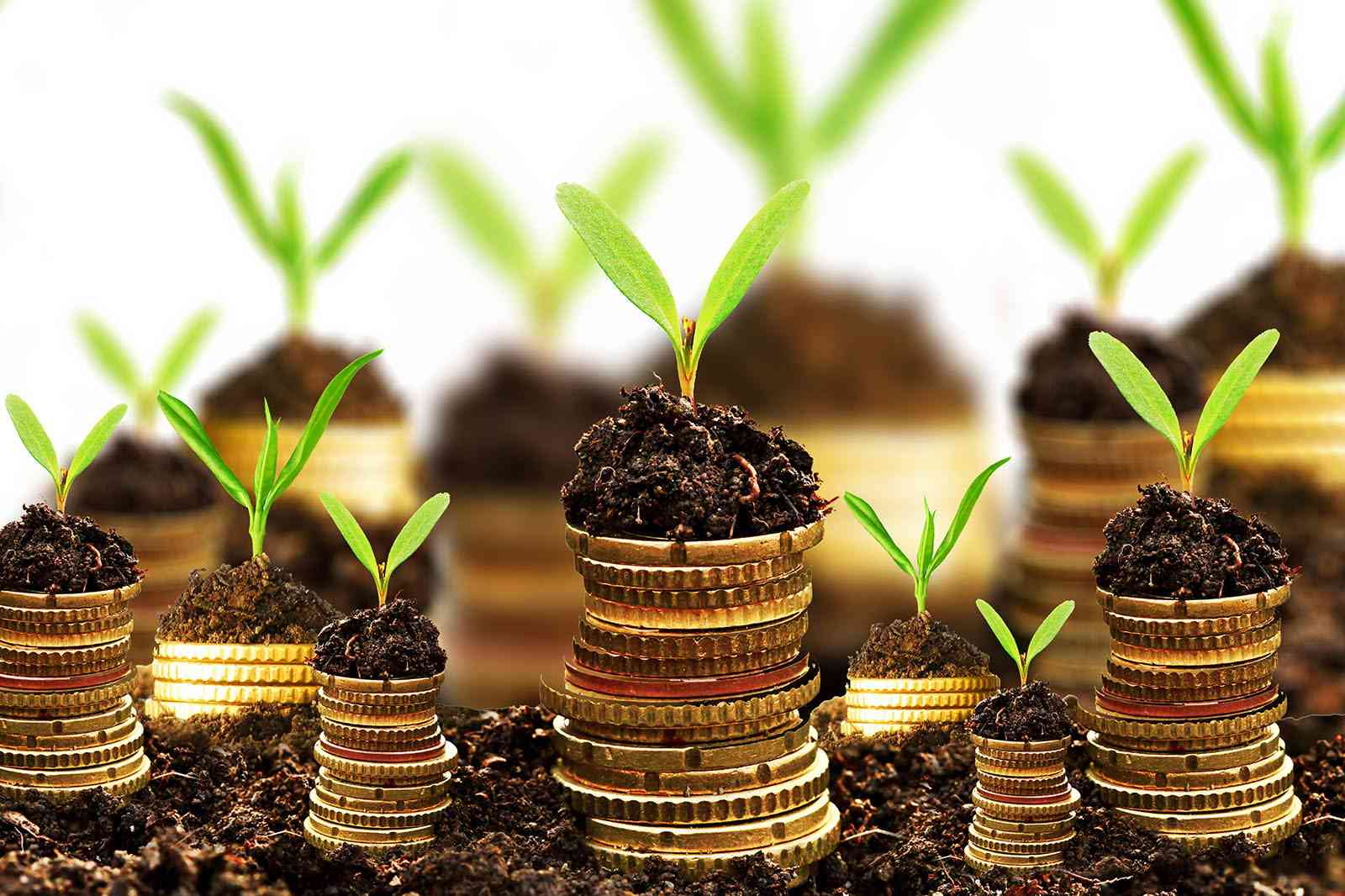 Picking Top-Quality Hedge Funds