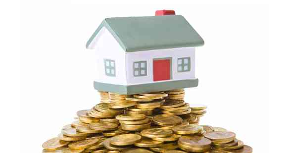 What are Home Saver Loans?