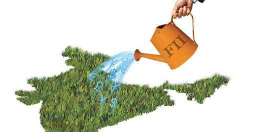 What are the RBI guidelines for an FII to invest in India?