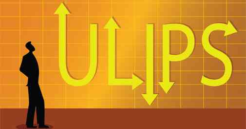 What is ULIP and Types Of ULIPs